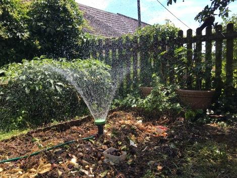 Flächenkompostierung mit Bewässerungsanlage