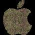 IOS App im App Store